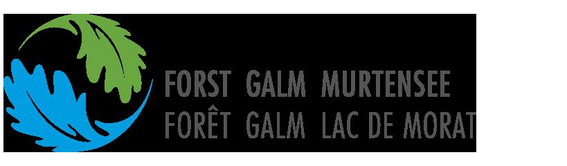 Galm Murtensee
